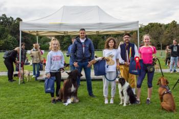 Borský park obsadily stovky psů